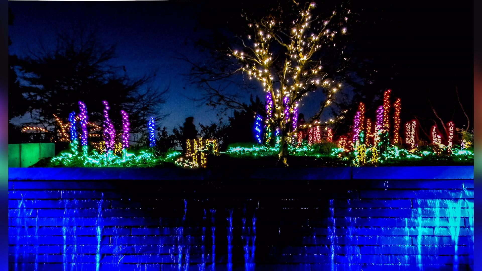 Garden D 39 Lights At Bellevue Botanical Garden