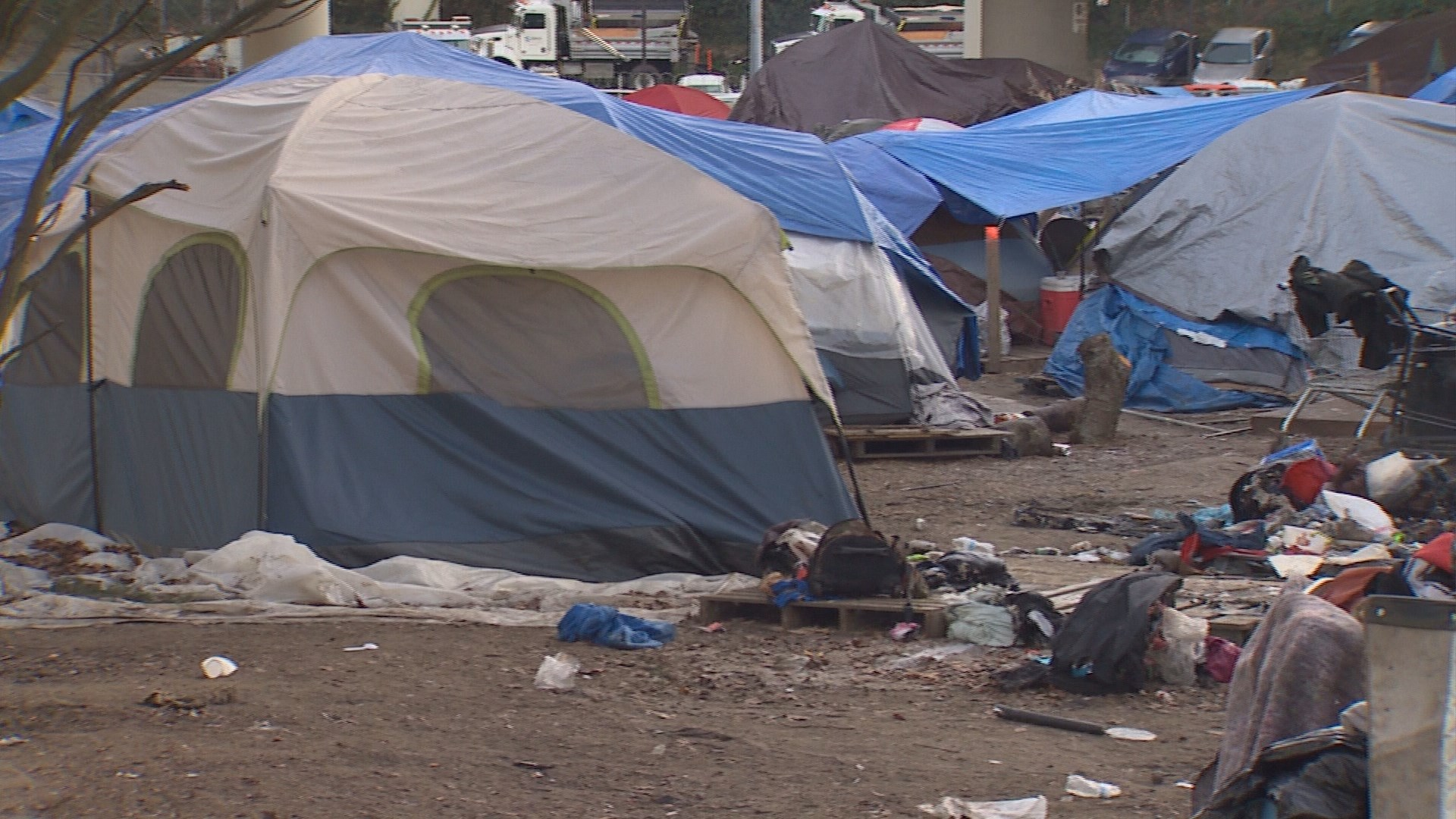 Nearly 12,000 people homeless in King County, new report ...
