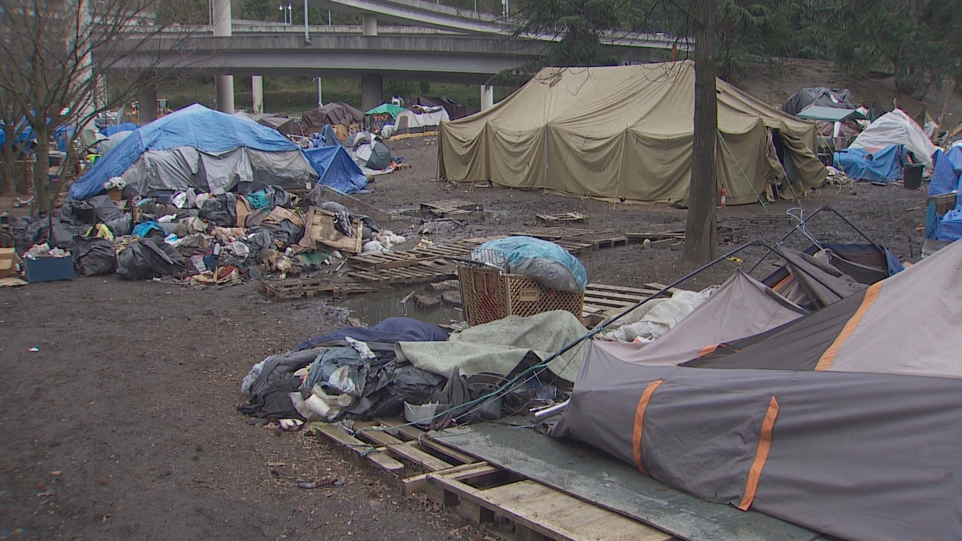 Seattle crews clear out controversial homeless camp ...