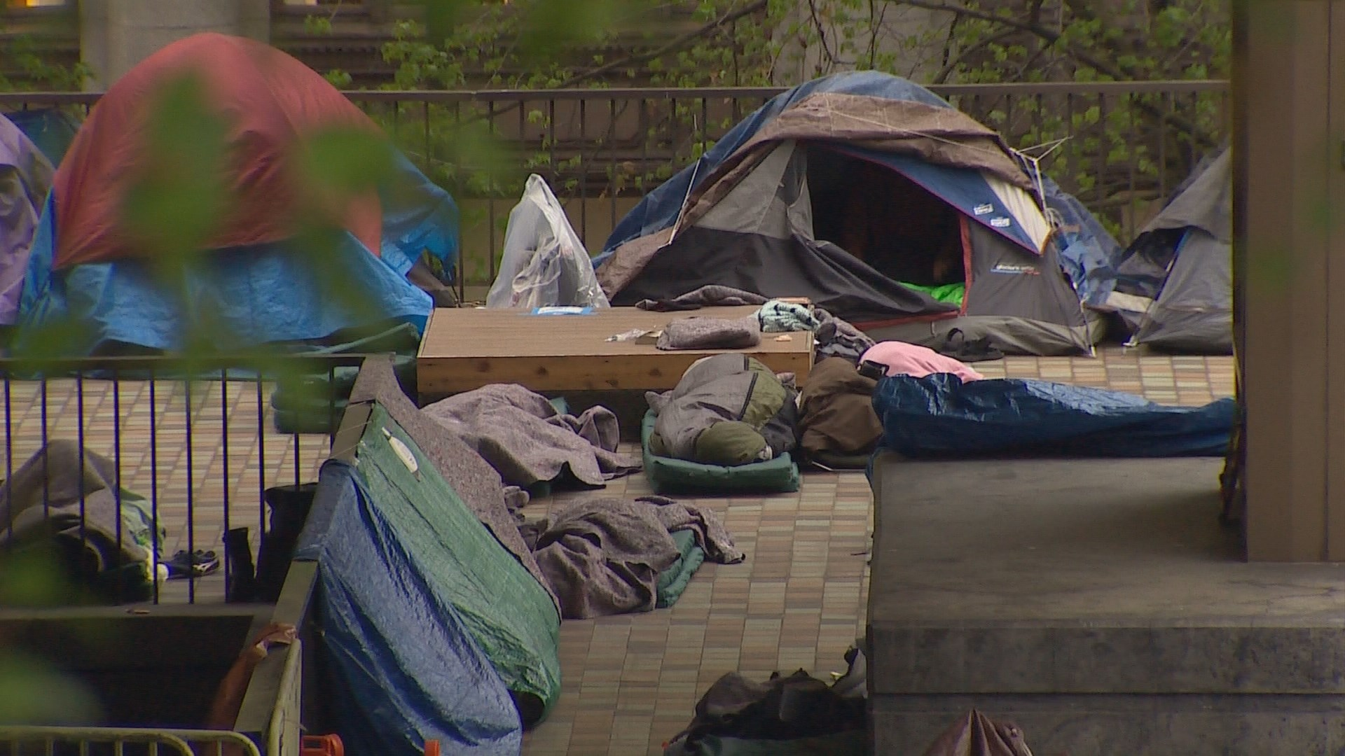 a study of the homeless The study looked at a year of homelessness, not just one day or week as used in the federal point in time study by the department of housing and urban development it counted more than the federal department of education can, as it.