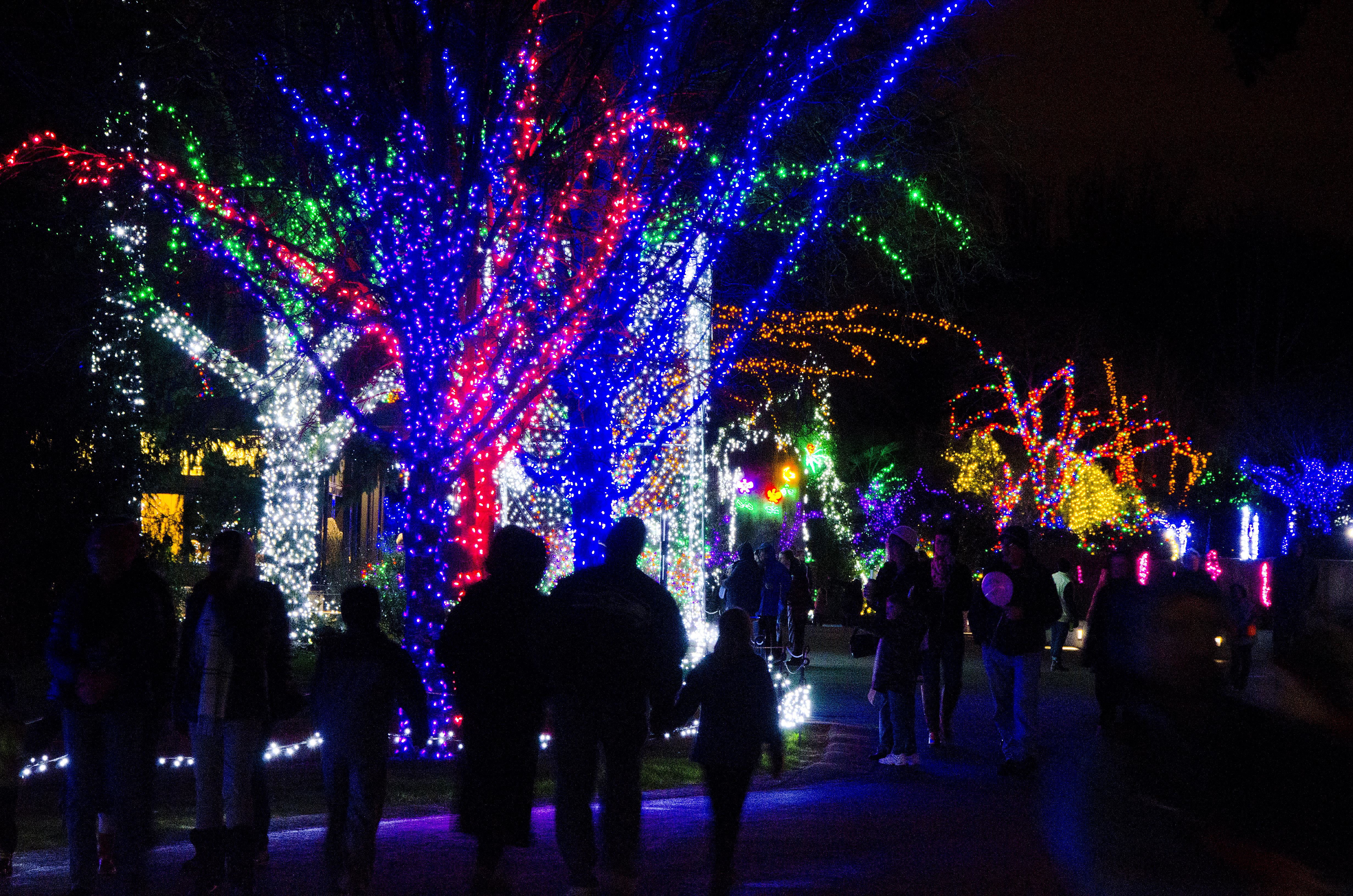 10 Seattle Area Holiday Light Displays